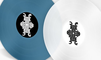 Shadow of the Colossus : un double vinyle collector aux couleurs du jeu