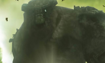 Test Shadow of The Colossus