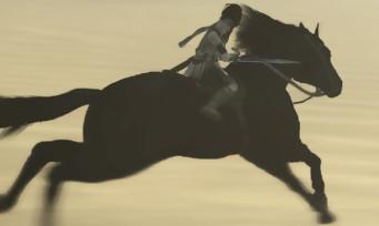 Shadow of the Colossus (PS4) : le mode Photo détaillé par les dévs