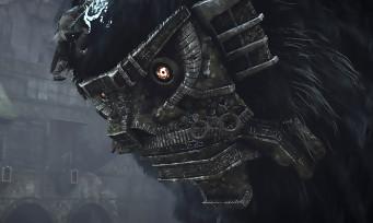 Shadow of the Colossus : toutes les infos sur le sublime vinyle de l'OST