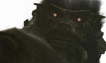 Shadow of the Colossus : il y avait 48 colosses au départ, les voici en images