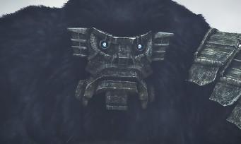 Shadow of The Colossus : un trailer avec les colosses les plus massifs