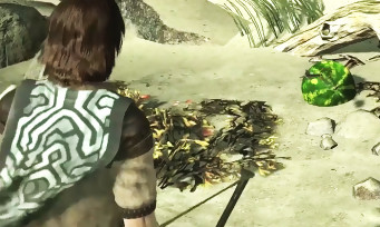 Shadow of the Colossus : l'astuce vidéo du easter egg de ICO