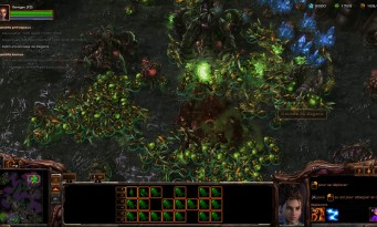 StarCraft 2 : Heart of The Swarm