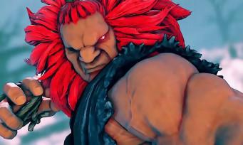 Street Fighter 5 Arcade Edition : du retard pour la sortie du jeu sur PS4