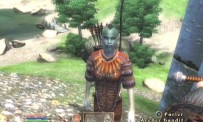 The Elder Scrolls IV : Oblivion
