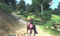 The Elder Scrolls IV : Oblivion