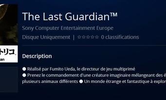 Last Guardian