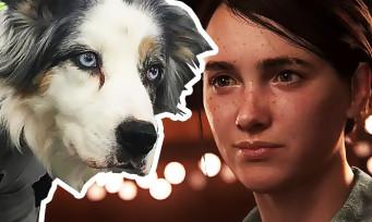 The Last of Us 2 : une photo avec des chiens en tenue de mocap