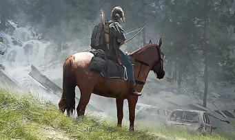 The Last of Us 2 : des illustrations en édition limitée qu'on peut acheter