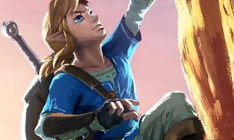 Zelda Breath of the Wild : trailer de la chasse et de la cuisine