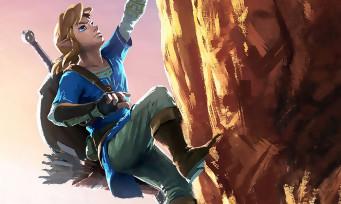 Zelda Breath of the Wild : astuce pour escalader sans perdre de l'endurance