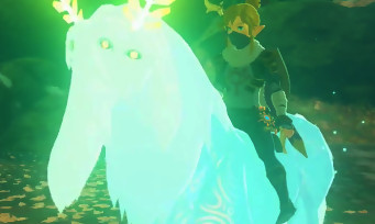 """Zelda Breath of the Wild : voici comment capturer le """"Cheval Alpha"""""""