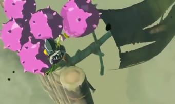 Zelda Breath of the Wild : astuce pour faire du radeau une montgolfière