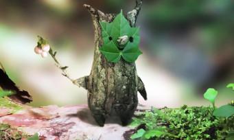 Zelda Breath of the Wild : la soluce pour trouver les 900 noix Korogus