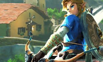 Zelda Breath of the Wild : la soluce pour acheter une maison à Link