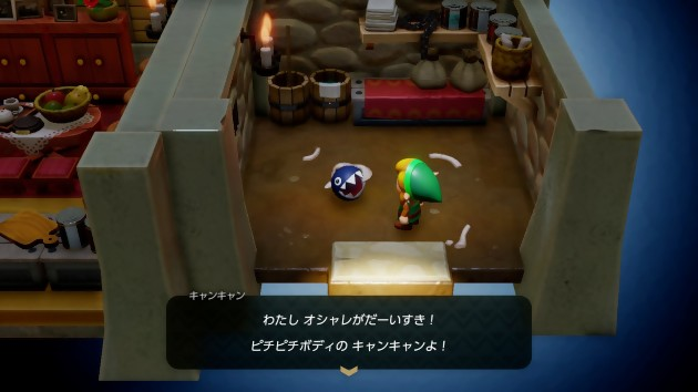 The Legend of Zelda : Link s Awakening