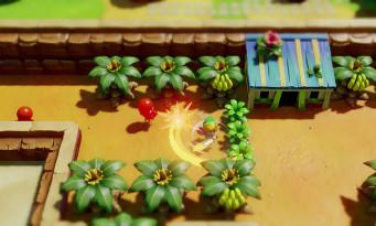 The Legend of Zelda : Link's Awakening Remake