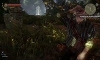 The Witcher 2 : Assassins of Kings - Gameplay vidéo # 1
