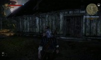 The Witcher 2 - vidéo DLC Troll Touble