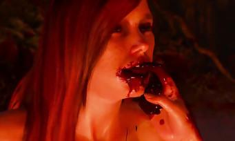 The Witcher 3 : un trailer pour résumer le jeu