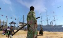 Le samurai des temps anciens regarde la Japon changer. Et les mouettes.
