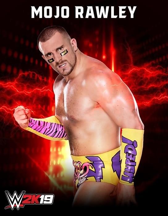 <b>WWE</b> <b>2K19</b> ne sortira par sur Switch